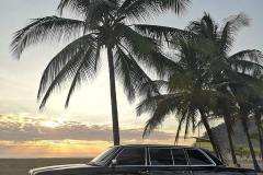 COSTA RICA LIMOUSINE PALM TREE BEACH